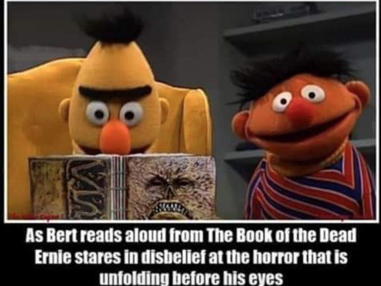 Do humanists need BERT?